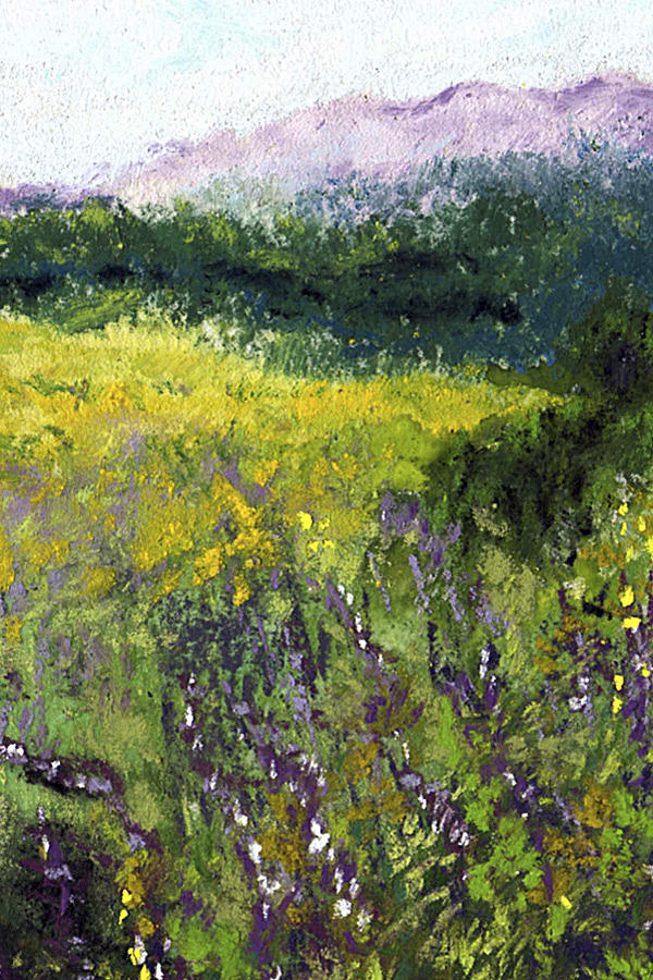 Miniature Painting - Field Of Flowers by David Patterson