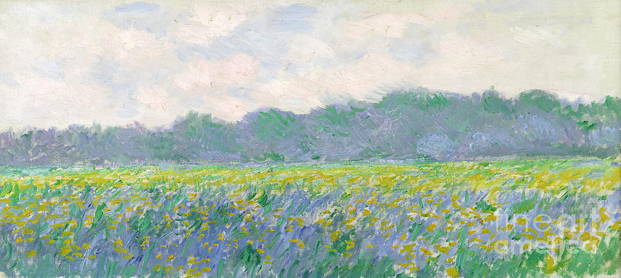 Field Painting - Field Of Yellow Irises At Giverny by Claude Monet