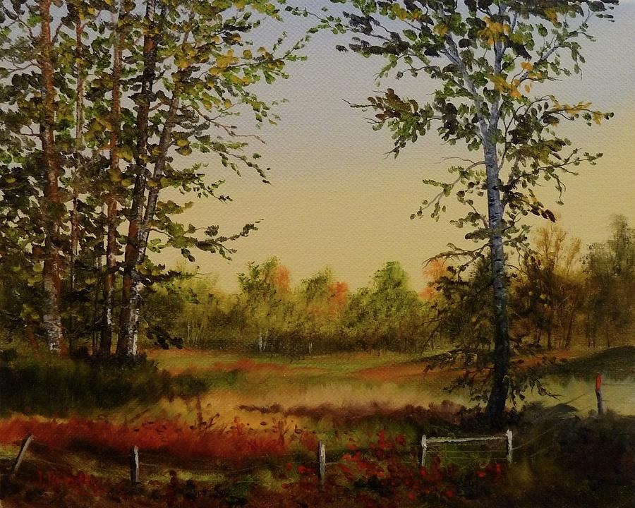 Judy Bradley Painting - Fields And Trees by Judy Bradley