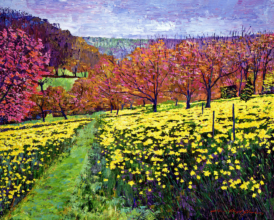 Impressionist Painting - Fields Of Golden Daffodils by David Lloyd Glover