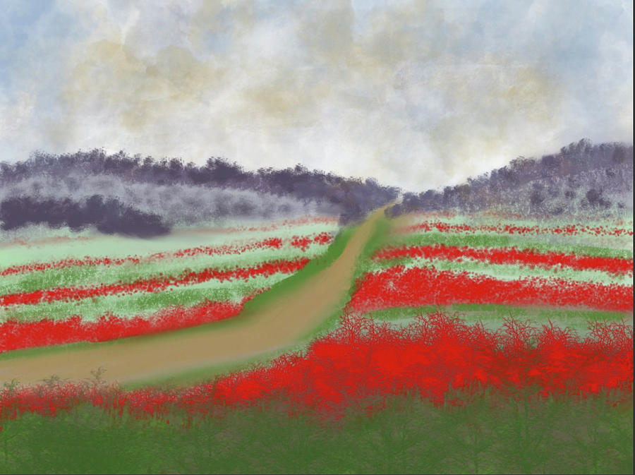 Fields of Red by Dick Bourgault
