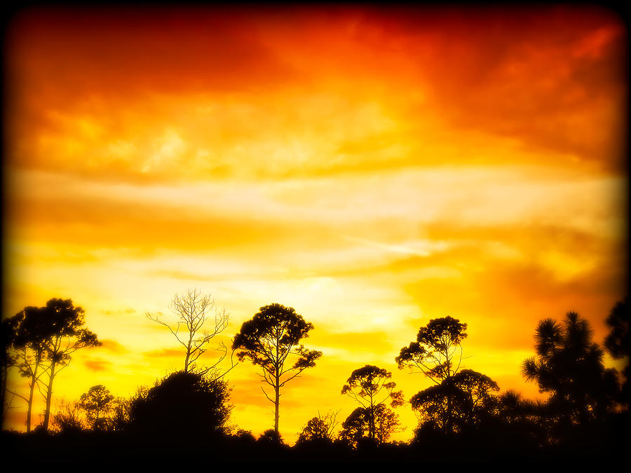 Sky Photograph - Fiery Sunset by Rich Leighton