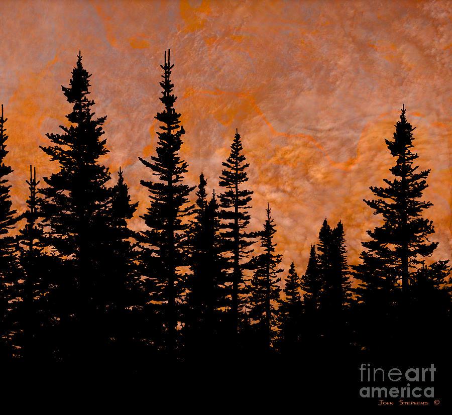 Silhouette Tree Decor