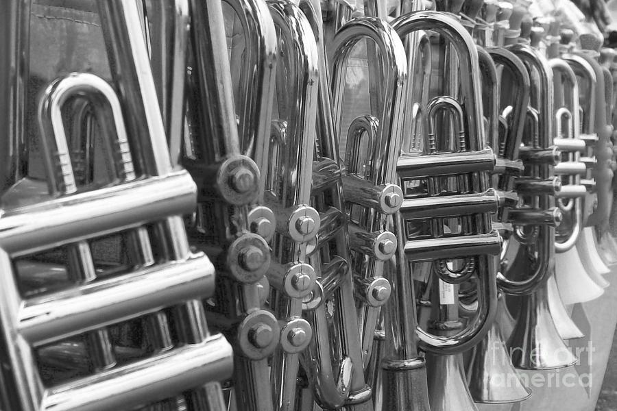 Congratulations Photograph - Fiesta Of Horns Bw by Laurie Eve Loftin