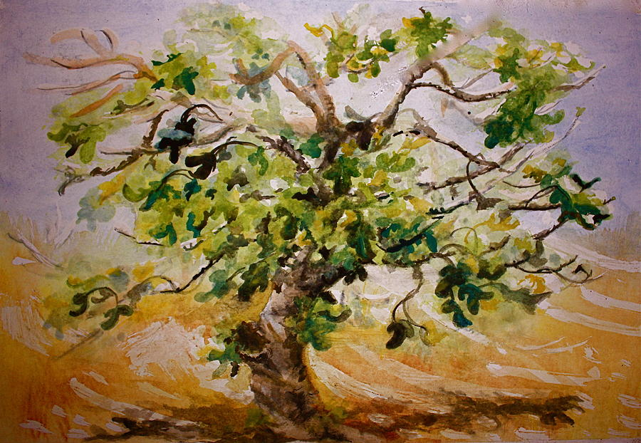 Painting Painting - Fig Tree by Yvonne Ayoub