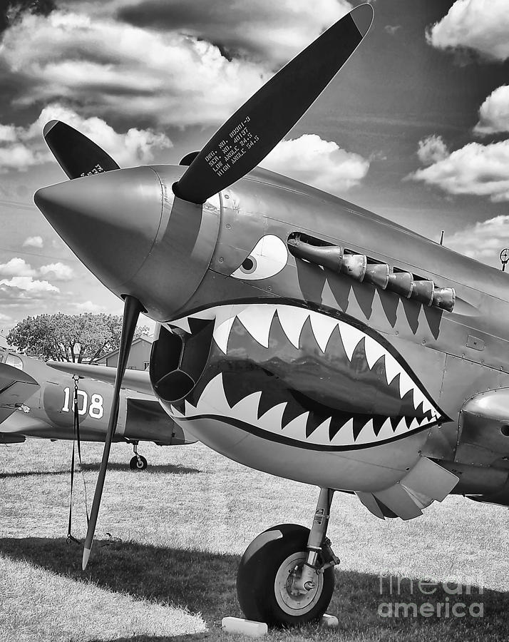 Canon Photograph - Fighting Tiger by Ricky L Jones