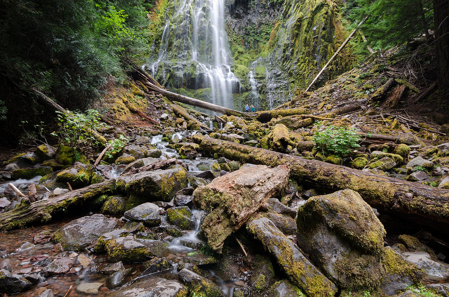 Waterfall Photograph - Find A Way by Margaret Pitcher