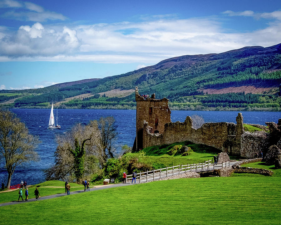 Find Nessie-the Loch Ness Monster by Rochelle Sjolseth
