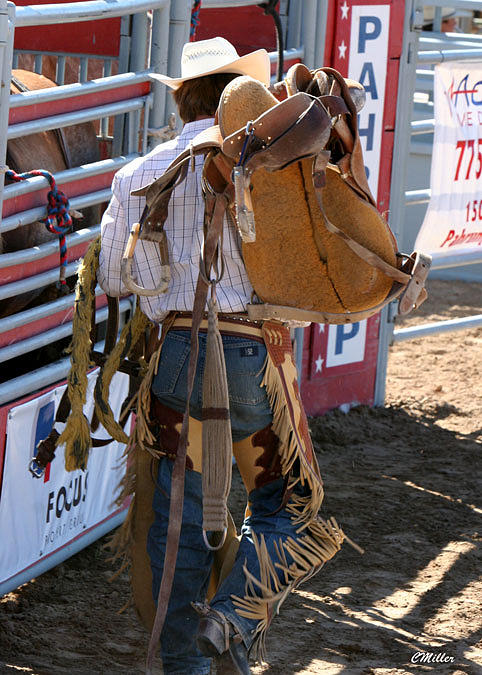 Rodeo Photograph - Finding His Horse.. by Carol Miller