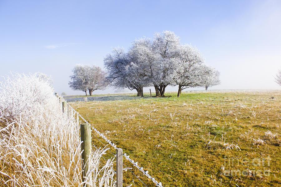 Artistic Photograph - Fine Art Winter Scene by Jorgo Photography - Wall Art Gallery