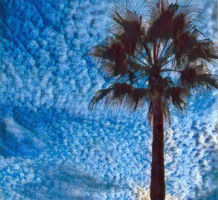 Fine Day in Spain  by Colette V Hera Guggenheim