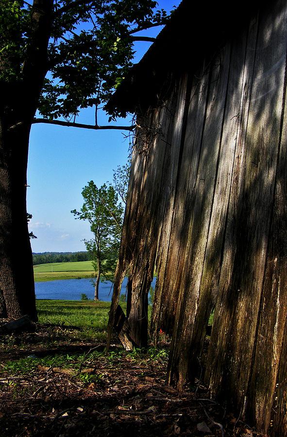 Landscape Photograph - Fine Woodwork by Rachel Christine Nowicki