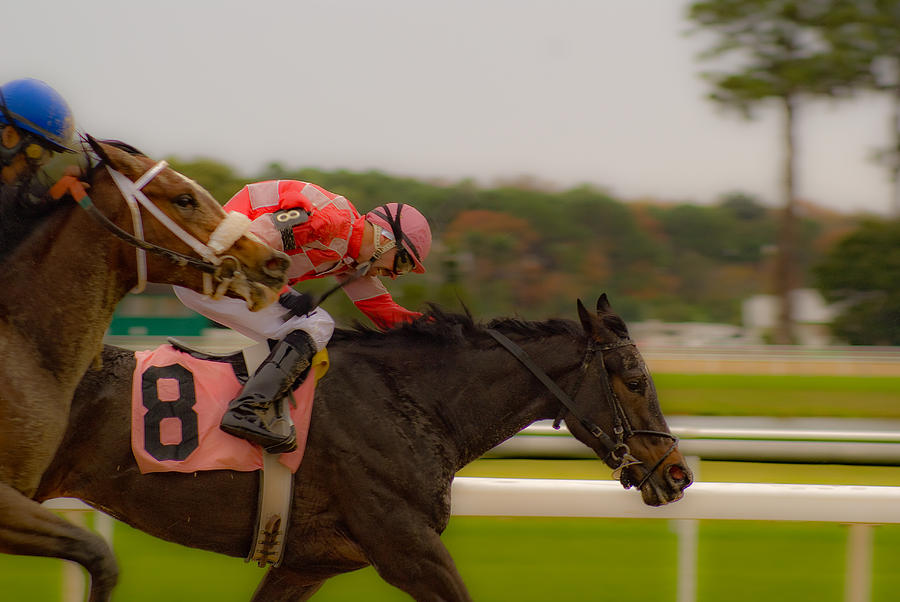 Horse Racing Photograph - Finish Line by Patrick  Flynn