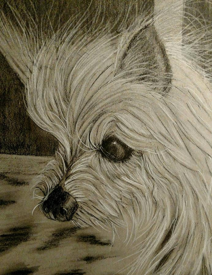 Yorkie Mix Pastel - Fiona In Thought by Joan Mansson