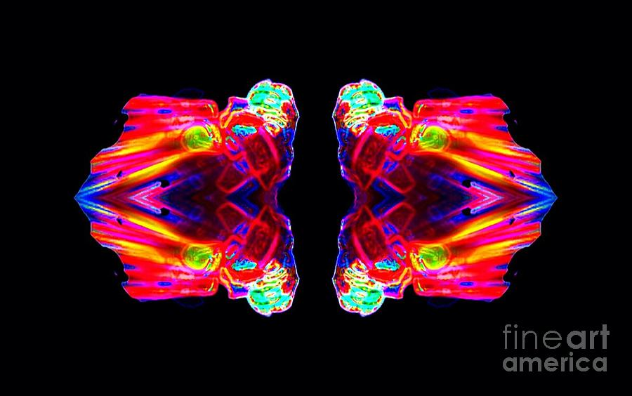 Abstract Digital Art - Fire Fly by Lorles Lifestyles