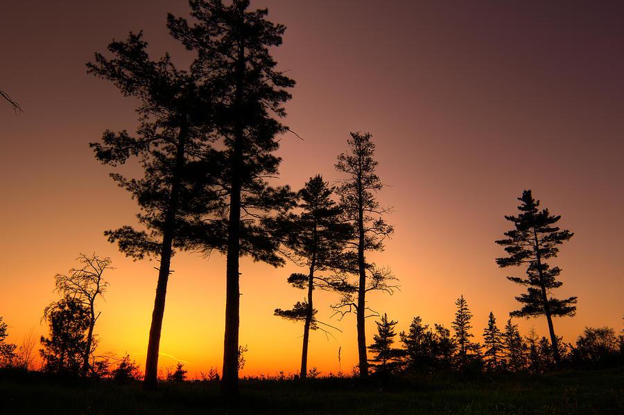 Sun Photograph - Fire In The Sky by Jakub Sisak