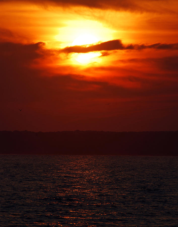 Sunset Photograph - Fire in the Sky by Mark Wiley
