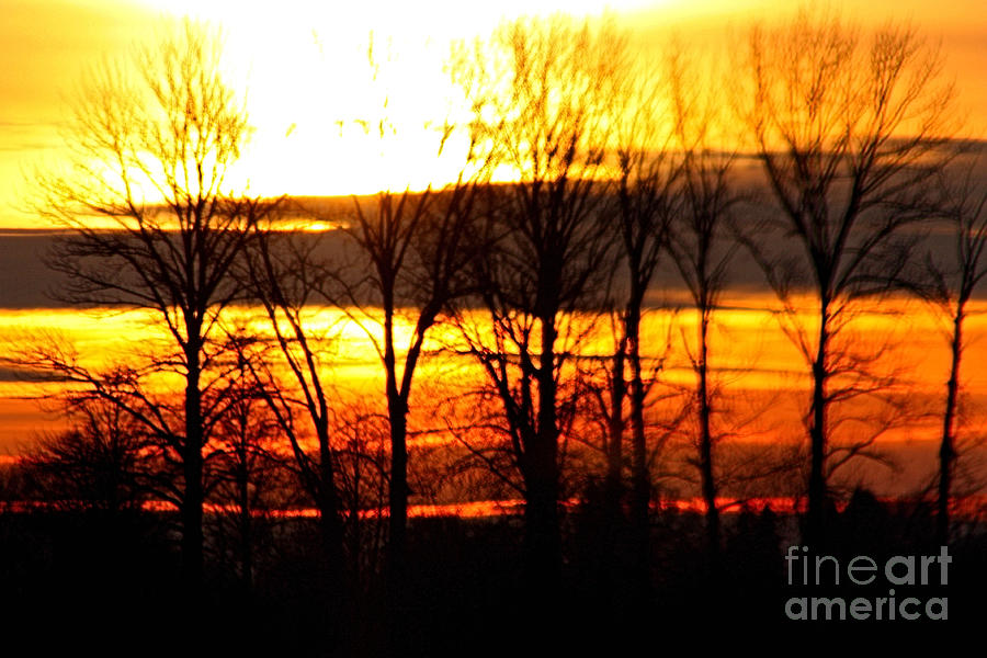 Sky Photograph - Fire In The Sky by Nick Gustafson
