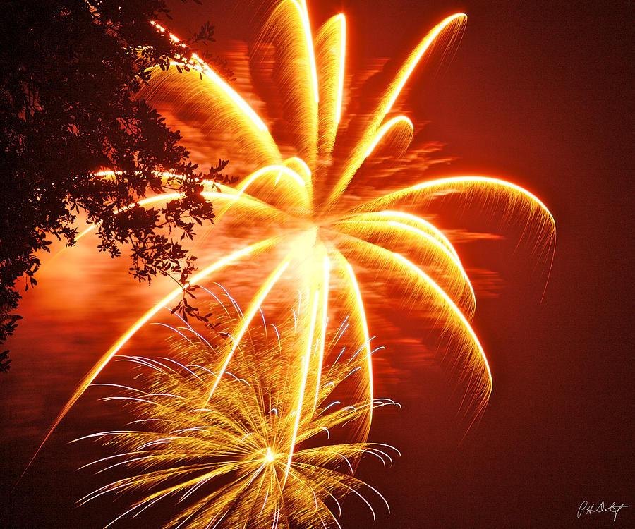 July 4th Photograph - Fire In The Trees by Phill Doherty