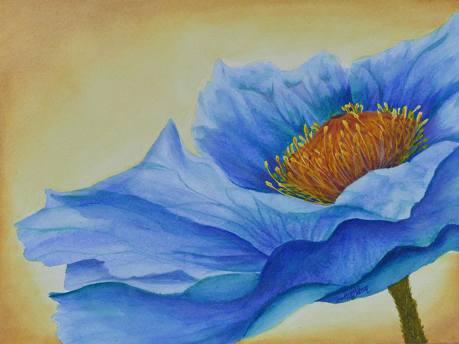 Poppy Painting - Fire In Water by Lisa Gibson