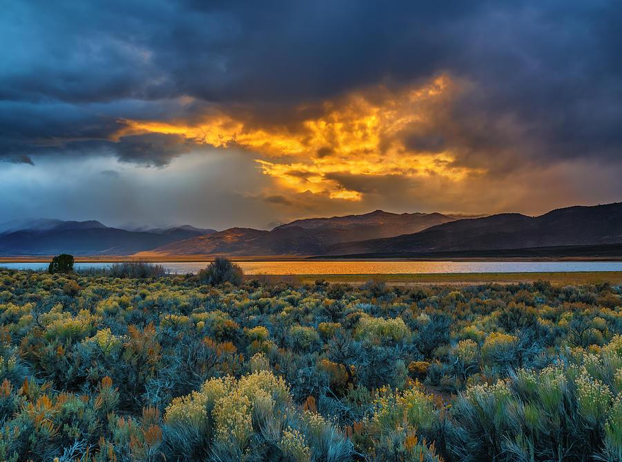 Fire Sky by Steven Maxx