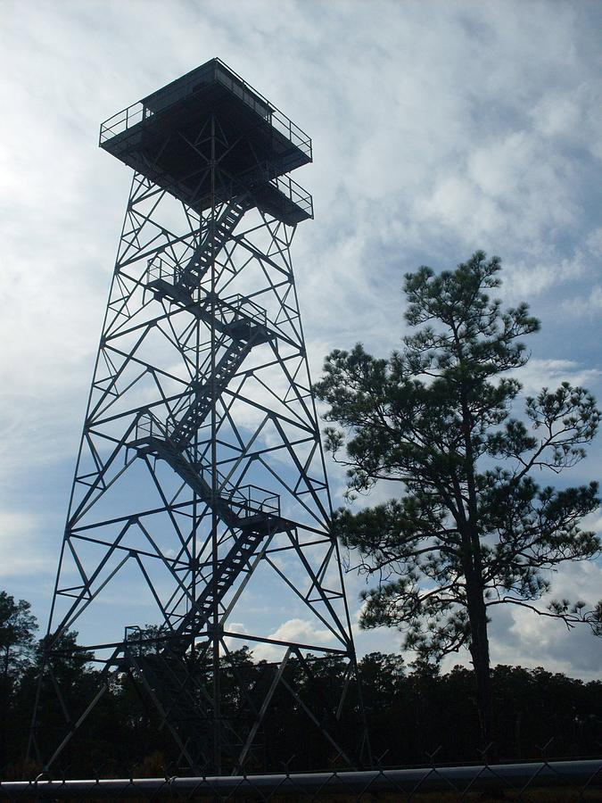 Ocala National Forest Photograph - Fire Tower In The Forest by Warren Thompson
