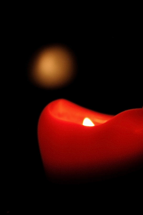 Candle Photograph - Firefly by Julie Bromley