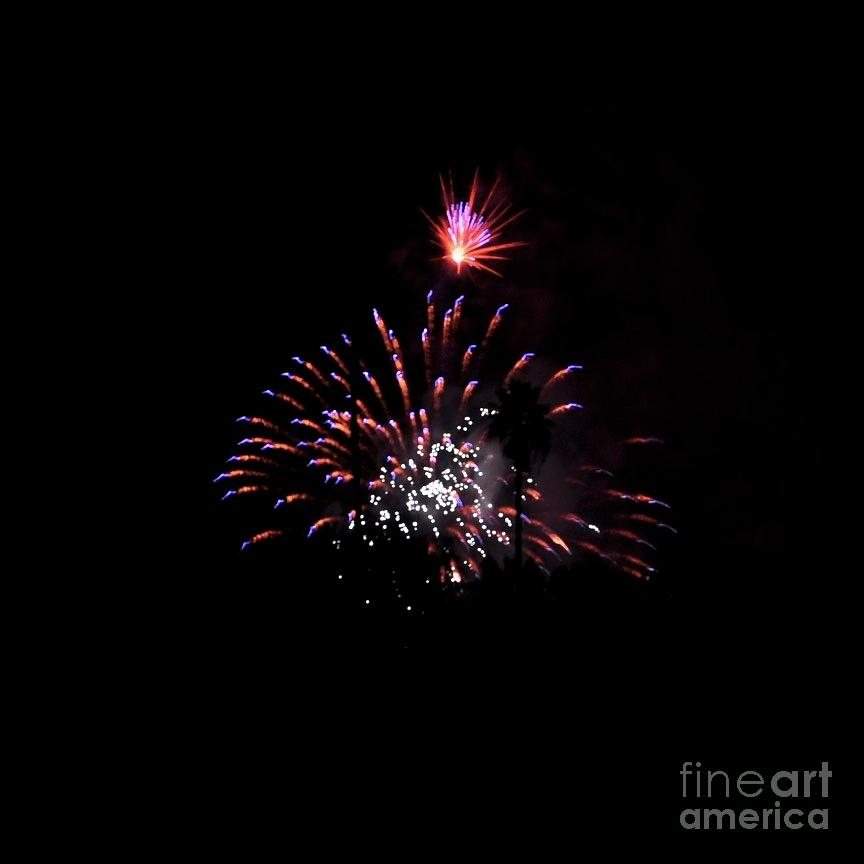 Firework  by Bridgette Gomes