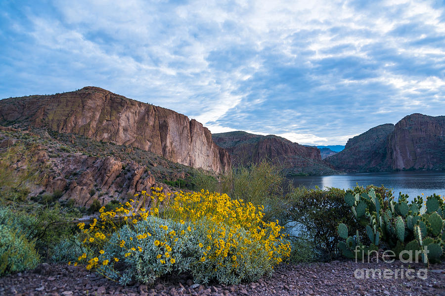 Landscape Photograph - First Day Of Spring - Canyon Lake by Leo Bounds