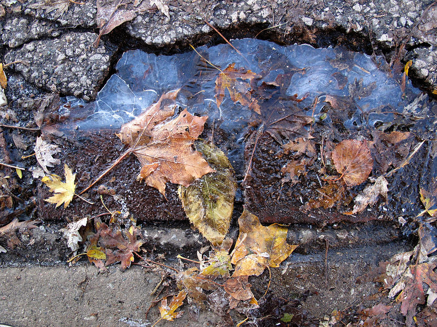 Landscape Photograph - First Morning Of Ice In Fall 2  by Lyle Crump