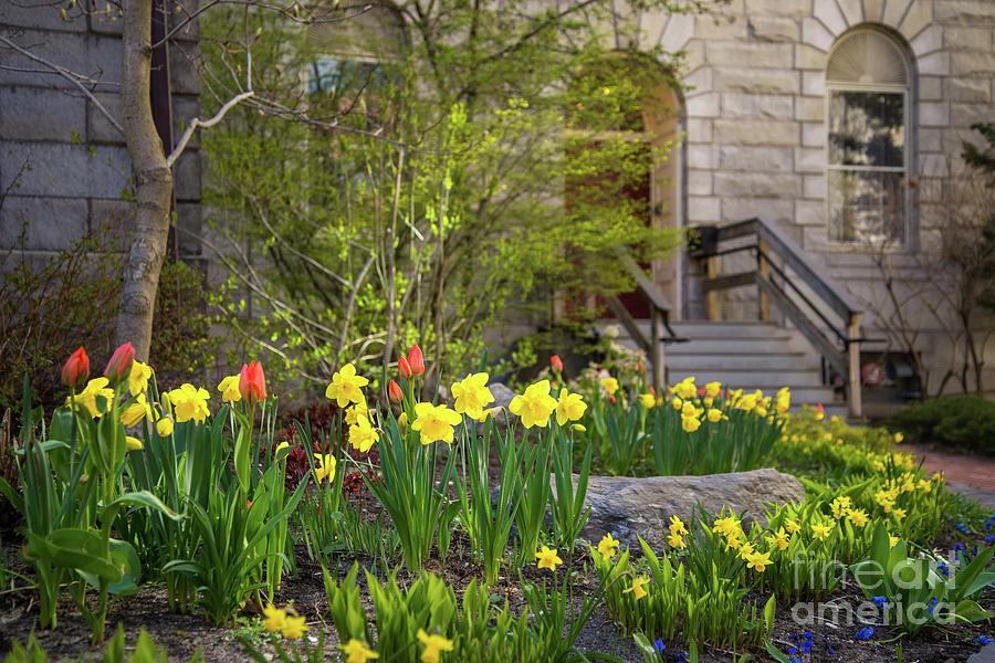 First Parish Church Garden Photograph by Corey Templeton