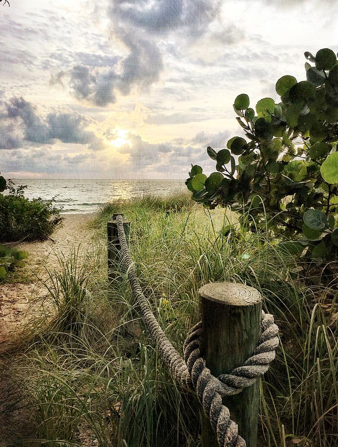 Beach Path Photograph - First Post by Andrew Royston