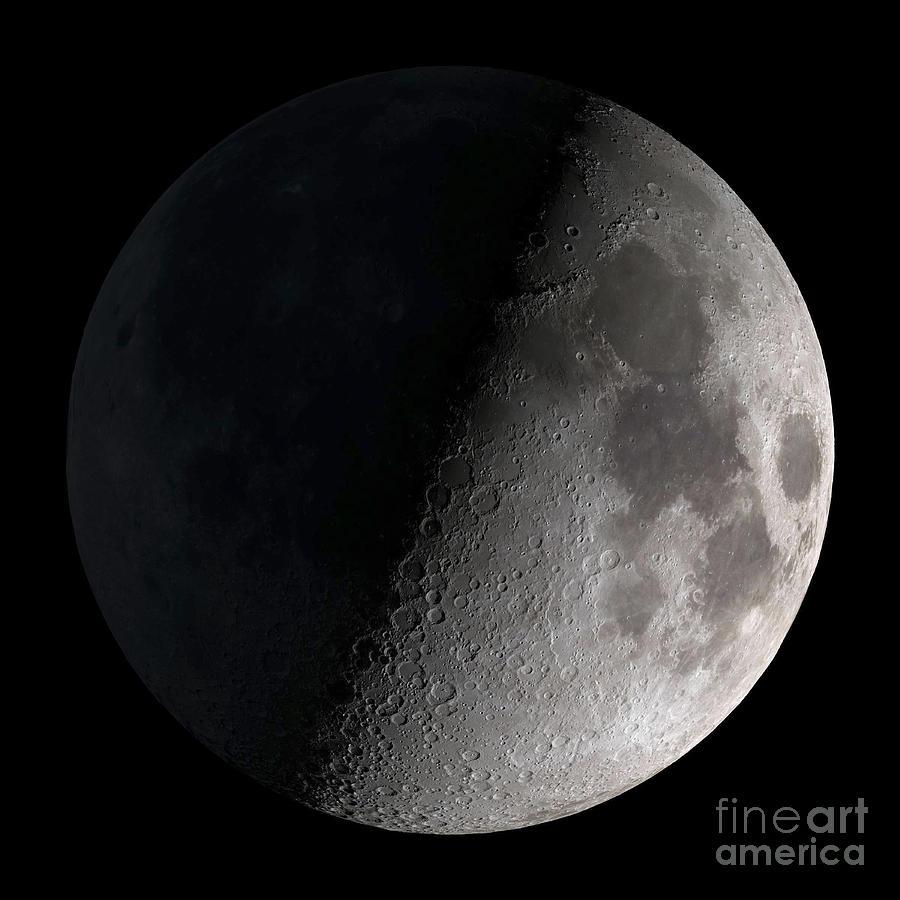 Mare Serenitatis Photograph - First Quarter Moon by Stocktrek Images