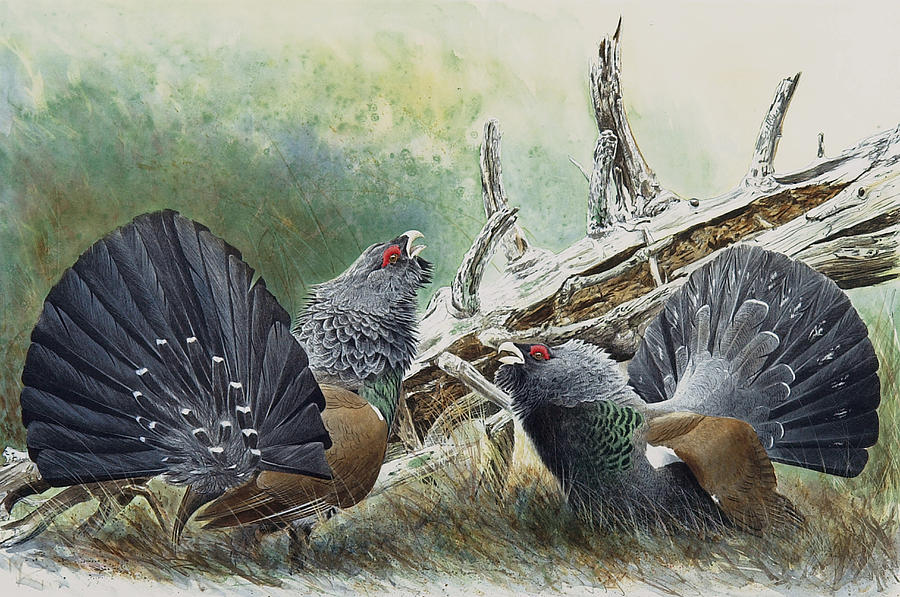 Gamebird Painting - First Round by Dag Peterson
