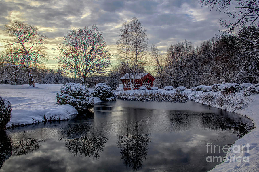 Winter Photograph - First Snow by Diana Nault