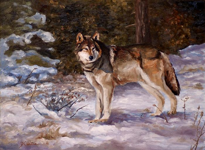 Wolf Painting - First Snow Tracks by Dustin Curtis