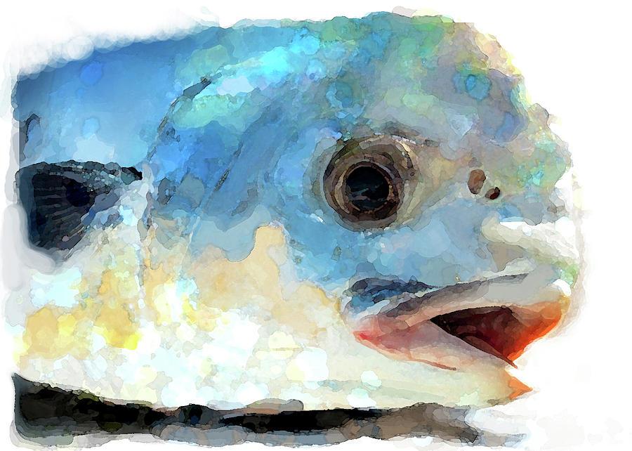 Fish 2 by Brenda Leedy