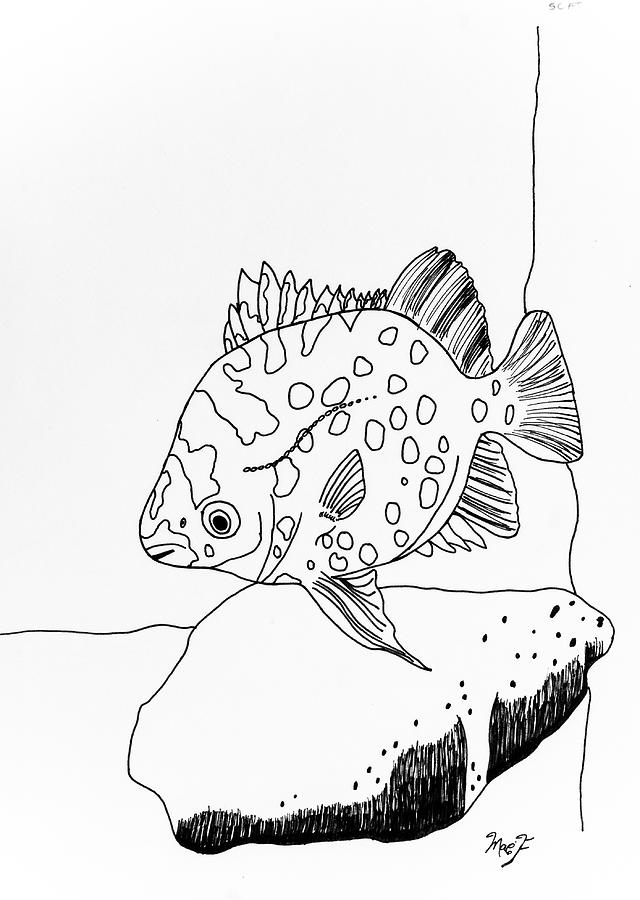 Original Drawing - Fish And Rock by Dean Italiano