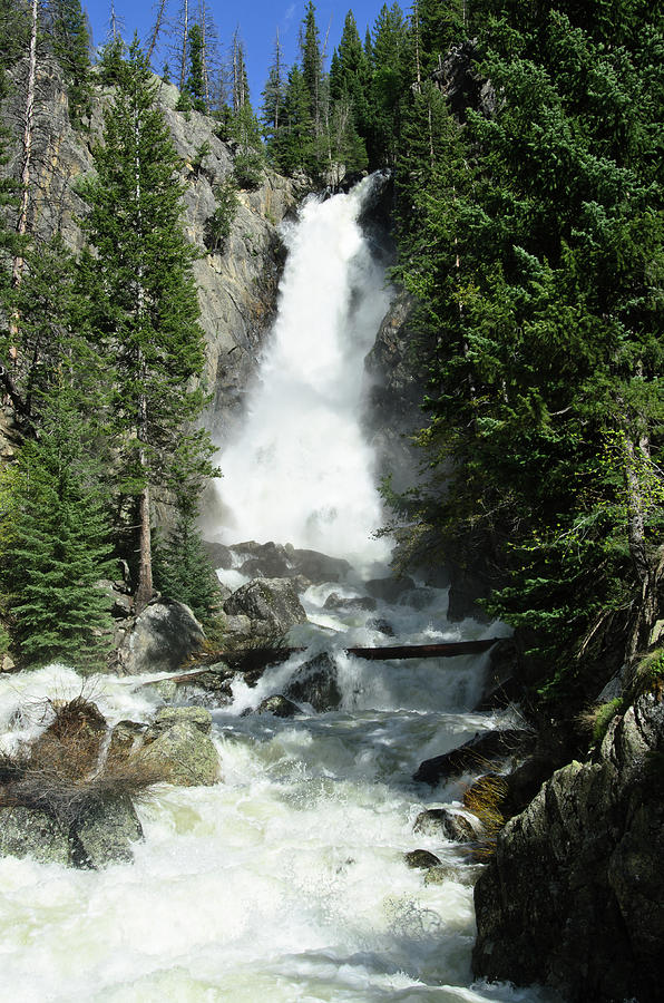 Vertical Photograph - Fish Creek Falls by Julie Rideout