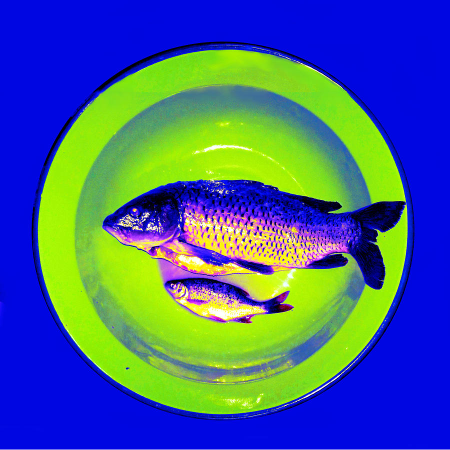 Fish on plate blue green modification by Lenka Rottova
