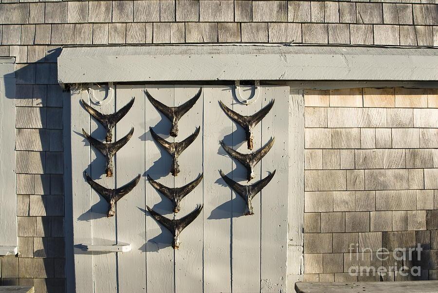 Cape Cod Photograph - Fish Tail Shack by John Greim