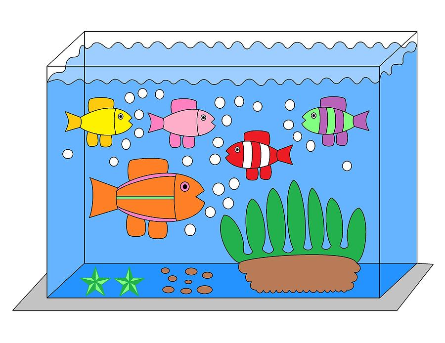Fish Tank Drawing By Paul Malone