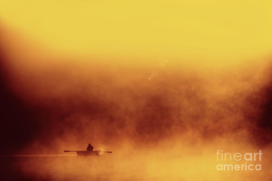 Fisher Photograph - Fisher in quiet morning fog by Arletta Cwalina