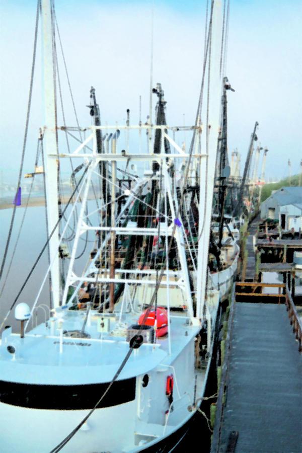 Fishing Boats by Linda Steele