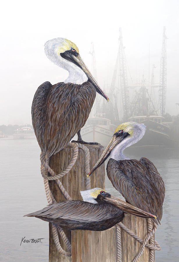 Pelicans Painting - Fishing Buddies by Kevin Brant