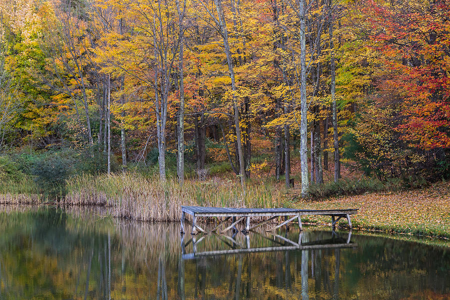 Fall Photograph - Fishing Dock In The Fall by Frank Morales Jr