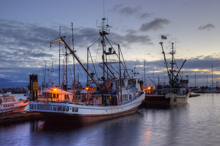 Fishing Boats Photograph - Fishing Fleet by Randy Hall