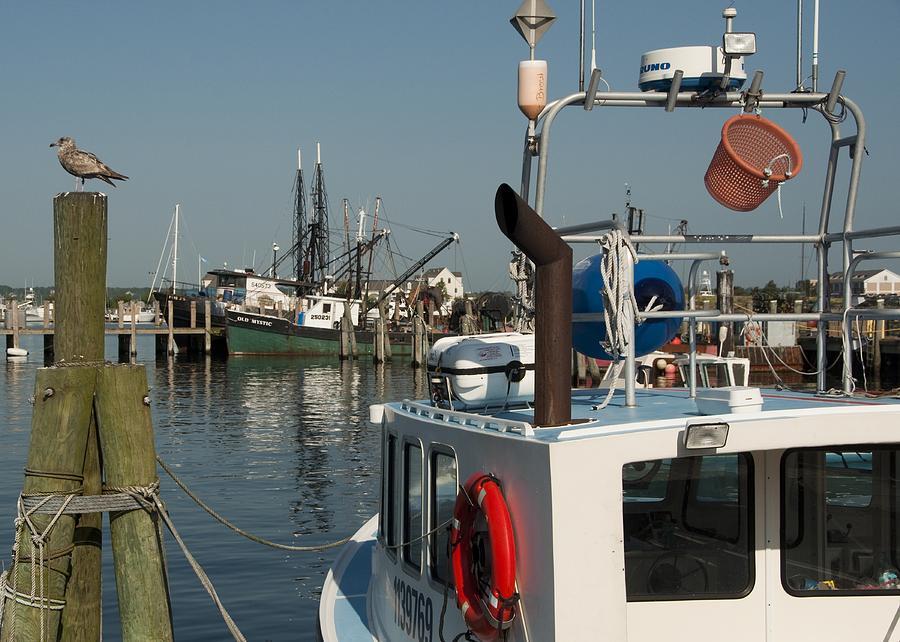 Long Photograph - Fishing Fleet by Steven Natanson