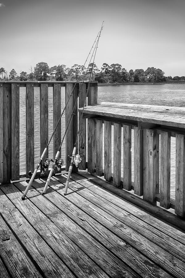 Nature Photograph - Fishing by Howard Salmon