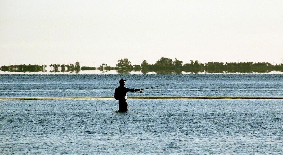 Digital Photograph - Fishing In The Shallows Of Tampa Bay 04 03123 by Richard Porter